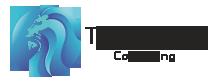 Topfinalyst Consulting Logo
